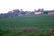 Houghton-Le-Side, Darlington