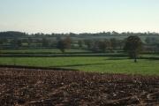 Bagmore's Farm, between Ebford and Woodbury