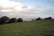 Farmland near Hobby Lodge