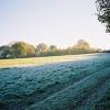 Frosty field edge, Remenham