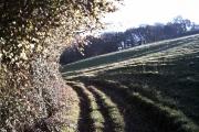 Farmland near Bailey's Ford
