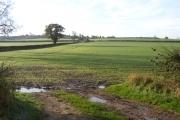 Farmland view towards Dadlington, Leics