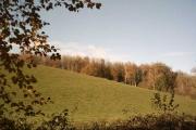 Farmland near Washfield Weir