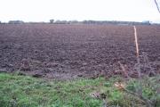 Farmland NW of Leconfield