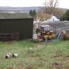 Denehall Farm