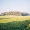 Farmland near Little Marlow