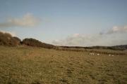 Farmland near Seymour Villas