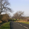 Country road between Little Newsham and Whorlton