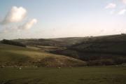 Farmland near Beara