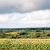 Tiverton: overlooking the Dart valley