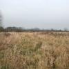 Rough pasture near Thurcaston