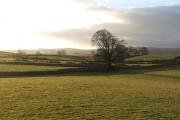 Farmland near Walmgate.