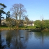 Pond at Denmore