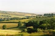 Butterleigh: near Coombe