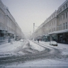 Snow on The Parade