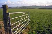 Farmland North of Aberdeen