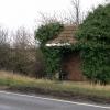 An Overgrown Bus Shelter