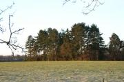 Drawback Hill