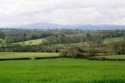 Broadwoodkelly: south to Dartmoor