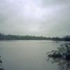 Willes Road meadow in flood