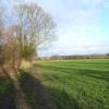 Farmland next to Strand Water