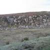 Rock Outcrop near Kingsburgh.