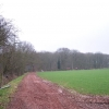 Highlea Wood