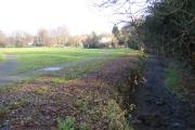 Luton: Lewsey Brook, Leagrave