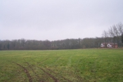 Lowe Coppice