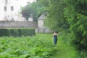 Behind the maze at Traquair House