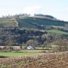 Bickleigh: Exe valley near Chitterleigh