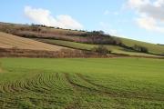 Bickleigh: south of Chetterleigh
