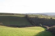 Silverton: farmland west of the village