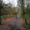 Redhill Common