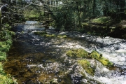 Lydford: the river Lyd