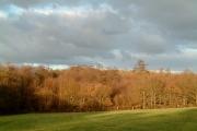 Square Wood Framfield