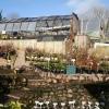 Tiverton: Withleigh Nursery