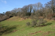 Cadeleigh: the road from Bickleigh