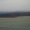 Farmland east of Ruscombe
