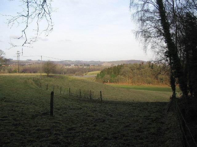 Woodcroft Wood