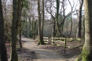 High Woods Nr Little Common East Sussex