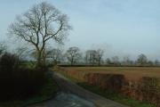 North Warwickshire farmland near the Whitacres