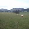 Farmland near Llanbedr Dyffryn Clwyd