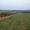 Whitelands Down