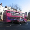 Pink Bus on The Parade