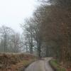 Hemyock: lane to BrowningÂ's
