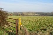 Farmland south of Alderholt Mill farm