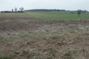 Fields and footpath, Caistor St Edmund