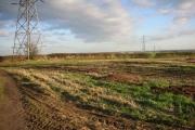 Tractor Wheelings and Pylon Line