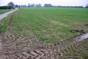Cotness Farmland